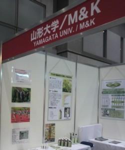 ifia2010の展示ブース